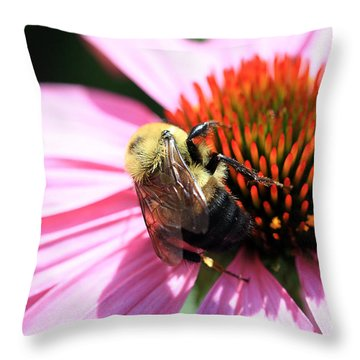 Throw Pillow featuring the photograph Think Bees by Paula Guttilla