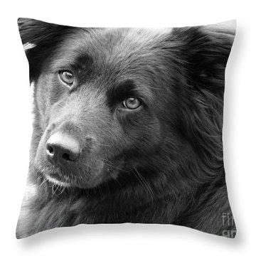 Thinking Throw Pillow by Amanda Barcon