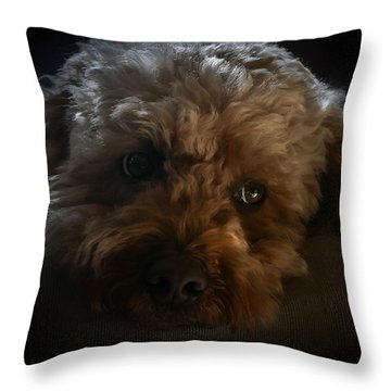 Throw Pillow featuring the photograph Thinking Of You by Tom Vaughan