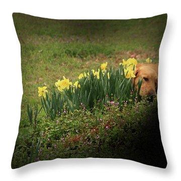 Thinking Spot Throw Pillow by Kim Henderson
