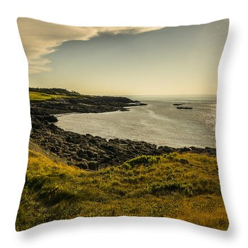 Thinking Sunset Throw Pillow by Will Burlingham