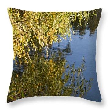 Throw Pillow featuring the photograph Thinking by Tara Lynn