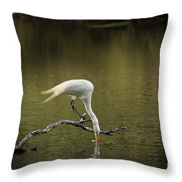 Throw Pillow featuring the photograph Thirst by Kim Henderson