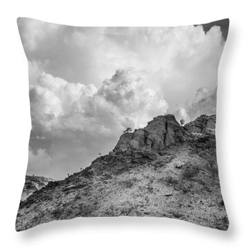 Thirsty Earth Throw Pillow