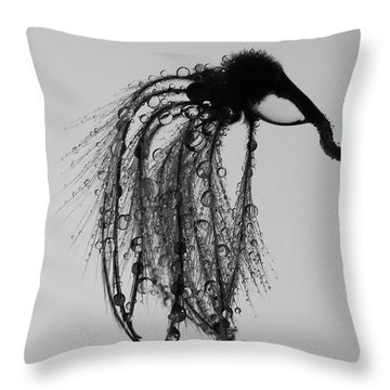 Thirsty Mosquito  Throw Pillow