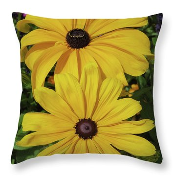 Throw Pillow featuring the photograph Thirteen by David Chandler