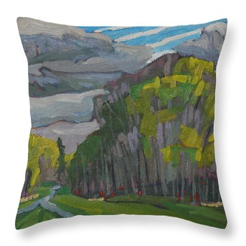 Thirty Shades Of Green Throw Pillow