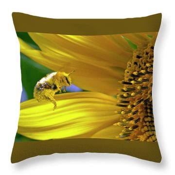 This Bee Needs A Bath Throw Pillow