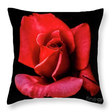 Throw Pillow featuring the photograph This Bud Is For You by Robert Bales