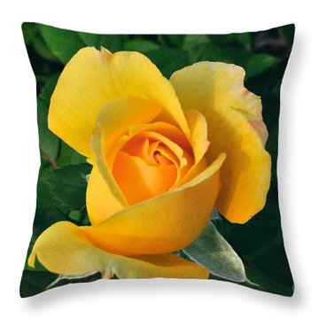 Throw Pillow featuring the photograph This Bud's For You by Sandy Molinaro