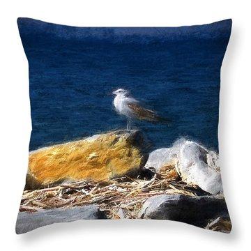This Gull Has Flown Throw Pillow by John Freidenberg