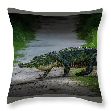 This Is My Trail Throw Pillow