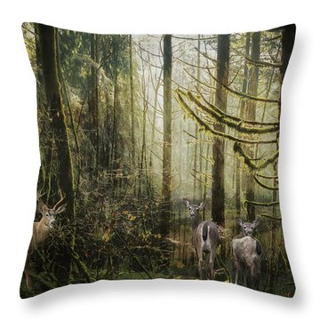 This Is Our Home Throw Pillow