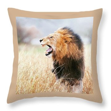This Is Power Throw Pillow