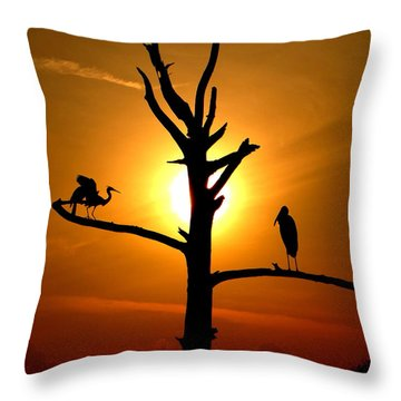 This Land Is Our Land Throw Pillow