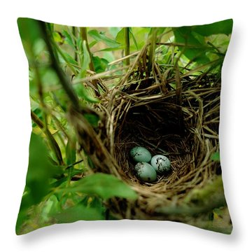 This May Be The Nest And Aggs Throw Pillow