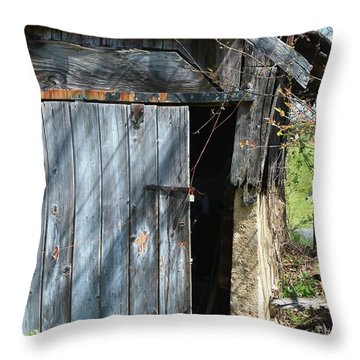 This Old Barn Door Throw Pillow