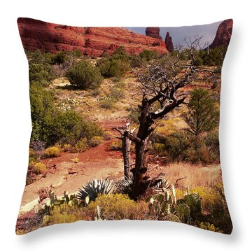 This Old Tree Throw Pillow