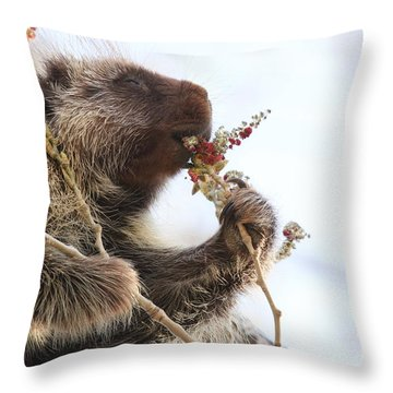 This One Is E X Q U I S I T E Throw Pillow
