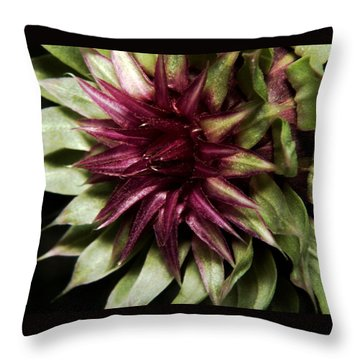 Throw Pillow featuring the photograph Thistle 01 by Karen Musick