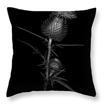 Thistle 1 Throw Pillow