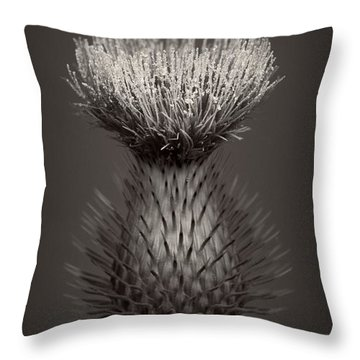 Thistle 3 Throw Pillow