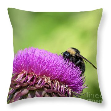 Thistle And Bee Throw Pillow