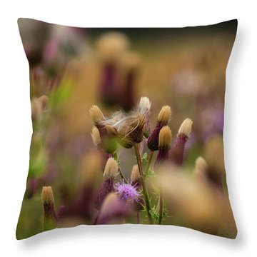 Throw Pillow featuring the photograph Thistle Babies by Jeremy Lavender Photography
