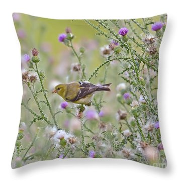 Thistle Bender Throw Pillow