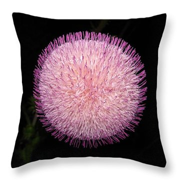 Thistle Bloom At Night Throw Pillow by J R Seymour