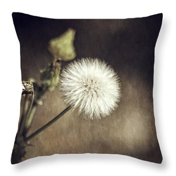 Throw Pillow featuring the photograph Thistle by Carolyn Marshall