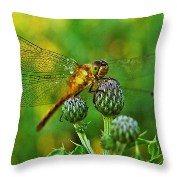 Thistle Dragon Throw Pillow by Michael Peychich