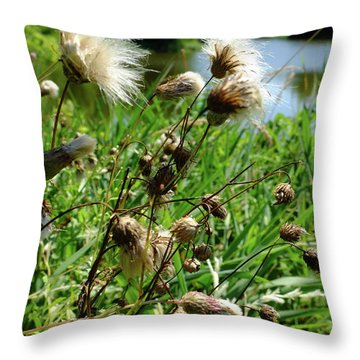 Throw Pillow featuring the photograph Thistle by Scott Kingery
