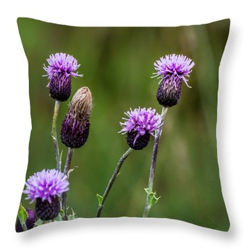 Thistles Throw Pillow
