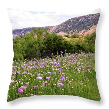 Thistles In The Canyon Throw Pillow