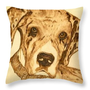 Thor - Great Dane Puppy Throw Pillow by Danette Smith