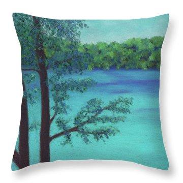 Thoreau's View Throw Pillow