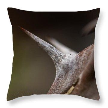 Thorn Throw Pillow