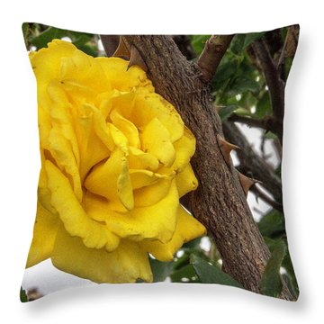 Throw Pillow featuring the photograph Thorny Love by Charles Ables