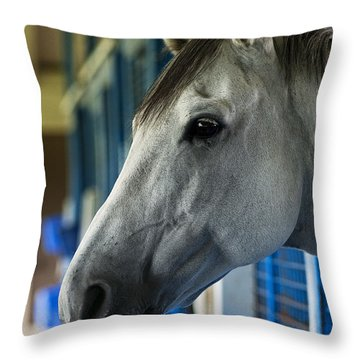 Thoroughbred Throw Pillow