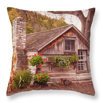 Throw Pillow featuring the photograph Thorp Cabin Door County Wisconsin by Heidi Hermes