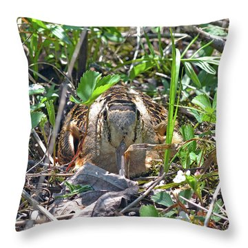 Those Eyes, Woodcock Eyes Throw Pillow