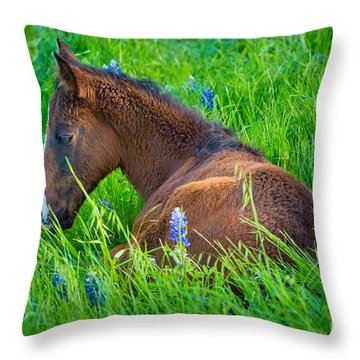 Thoughtful Foal Throw Pillow
