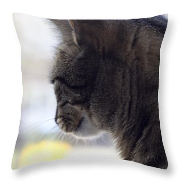 Longing... Throw Pillow