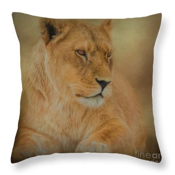 Thoughtful Lioness - Square Throw Pillow