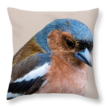 Thoughtful Throw Pillow by Torbjorn Swenelius