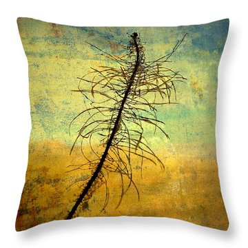 Thoughts So Often Throw Pillow