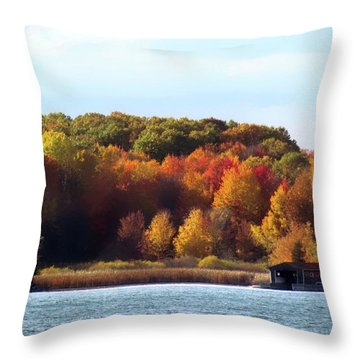 Thousand Island Color Throw Pillow