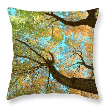 Thousands Of Voices Throw Pillow