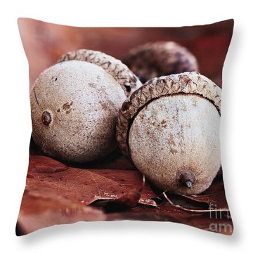 Throw Pillow featuring the photograph Three Acorns And Autumn Oak Leaves by Stephanie Frey